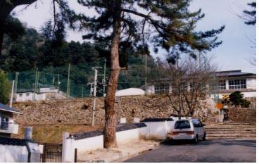 竹薮を伐採し石垣が見えるようになった高梁高校